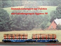 Stammholztransport